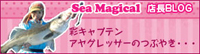 Sea Magical 2号